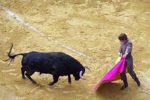 Как растолковать сон про быка
