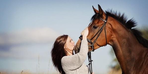 Если во сне вы любуетесь хорошо подкованной лошадью – успех ваш в ближайшее время поразит даже ваше собственное воображение.