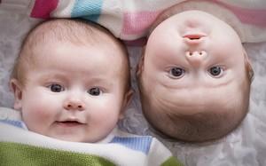 Приснились двойняшки