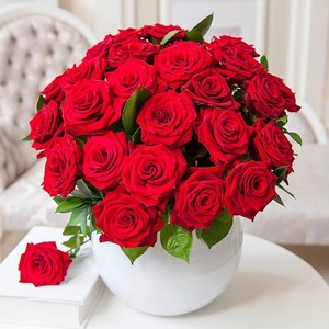 Красная роза во сне